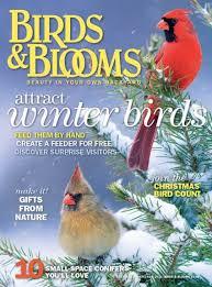 big backyard magazine ct outdoor