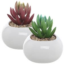 amazon com set of 2 small round white ceramic modern succulent