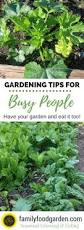 easy gardening tips for busy people