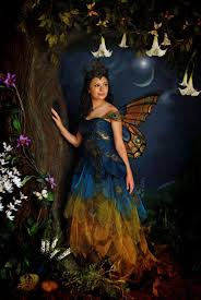 Fairy Costumes Fairy Costumes Picmia