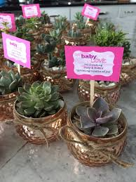 baby showers favors succulent baby shower favors my party creations