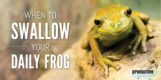 when to swallow your daily frog