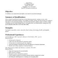 Detailed Resume Example by Attractive Sample Of Assistant Project Manager Resume With Areas