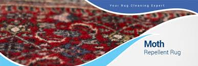Rugs In Dallas Moth Repellent And Protective Treatments For Area Rugs In The