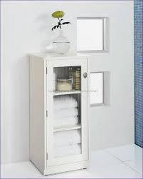 2 Door Pantry Cabinet Furniture Fabulous Extra Tall Pantry Cabinet Tall Skinny Cabinet