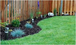 Landscaping Ideas For Backyard Privacy Backyards Gorgeous Landscaping For Small Backyard Landscaping