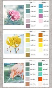 Room Color Palette Generator Web Help Color Palette Generator Home Creature Comforts