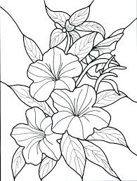printable coloring pages of pretty flowers coloring pages of flowers pretty flower coloring pages flowers