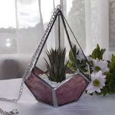 air plant terrarium raven u0027s stained glass