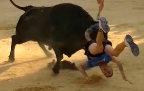 imagenes impactantes que os gustara sustos y revolcones impactantes imagenes de bous al carrer toros