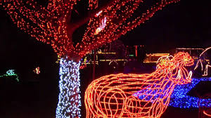Oregon Garden Christmas Lights Zoolights At The Oregon Zoo Youtube