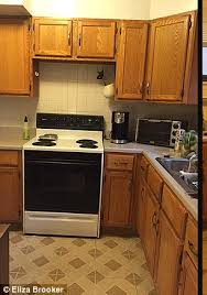 woman renovates her kitchen for 100 daily mail online