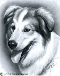 drawing realistic pets from photographs step by step art lessons