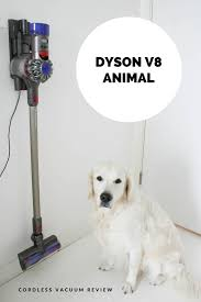 How To Keep House by Dyson V8 Animal Cordless Vacuum Review How To Keep Your House