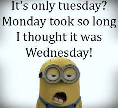Tuesday Memes Funny - 35 very funny minion quotes minions funny minion quotes