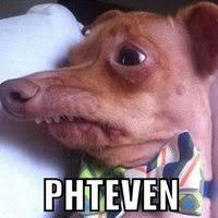 Birthday Dog Meme - birthday dog know your meme