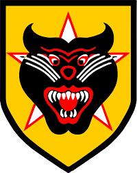Army Ranger Flag Vietnamese Rangers Wikipedia