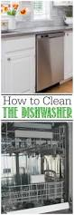how to clean a dishwasher clean and scentsible