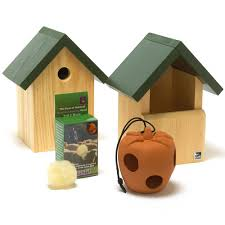 Cool Bird House Plans Bird Houses And Nest Boxes Rspb Wildlife Rspb Shop