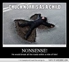 Funny Quotes Memes - chuck norris as a child nonsense he would break all the roads