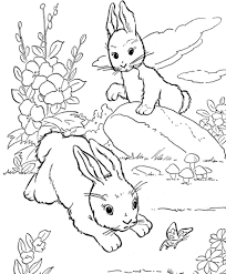 rabbit coloring pages rabbits winter coloring pages rabbit free