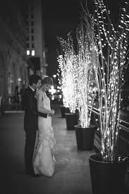 best 25 lighted trees ideas on lights in trees