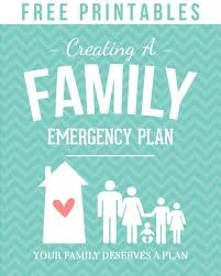 best 25 family emergency binder ideas on emergency