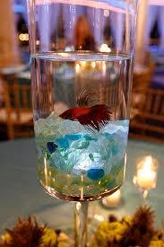 Betta Fish Decorations Best 25 Fish Centerpiece Ideas On Pinterest Beta Fish