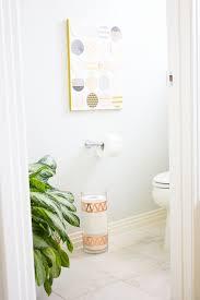 Bathroom Tissue Storage Bath Tissue Storage Idea With Cottonelle Design Improvised