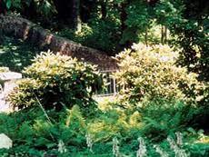 studium garten und landschaftsbau garten und landschaftsbau