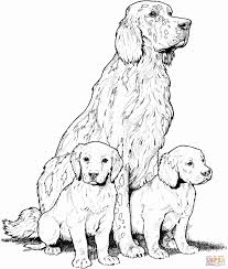 lovely coloring pages of dogs coloring pages gallery coloring