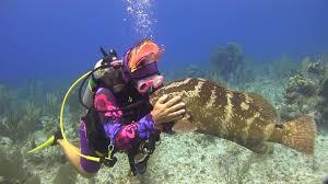 Indiana snorkeling images Scuba training aquatech scuba centerscuba training dive travel jpeg