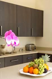 23 best quartz worktops images on pinterest quartz kitchen