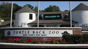 turtle back zoo light show 2017 turtle back zoo youtube