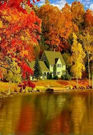 this is wayyyy to beautiful ss autumn harvest a colorful fall