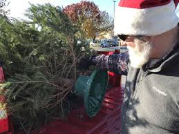 boy scouts continue tradition of selling christmas trees at
