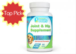 best joint supplement the 5 best hip and joint supplements for dogs 2018 reviews deals
