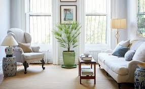 the best and most beautiful house plants for cleaner air