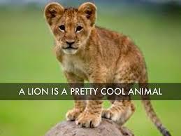 lion by zalanakj0126
