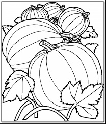 great fall harvest coloring pages with harvest coloring pages