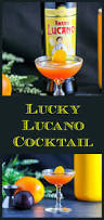 vintage cocktail 231 best the gastronom craft cocktails images on pinterest craft