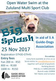 south african guide dog association