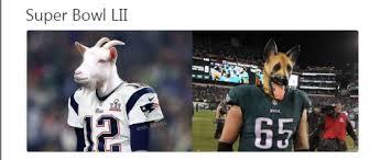 Nfl Bandwagon Memes - memes celebrate patriots eagles huge wins houston chronicle