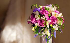 violet roses bouquet 7006141