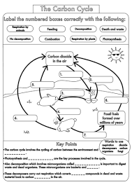 2 d biogeochemical cycles of greenhouse gases carbon cycle