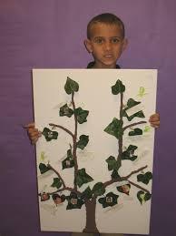 third grade family trees san angelo christian academy