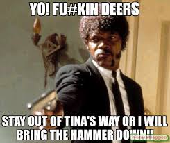 Babysitting Meme - yo fu kin deers stay out of tina s way or i will bring the hammer