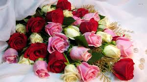 Bouquet Of Roses Hd Image Woman Spring Flowers Bouquet Of Roses Hq Wallpaper