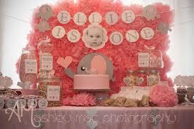 baby girl 1st birthday ideas pink grey elephants birthday party ideas photo 4 of 24 catch