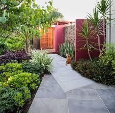 north beach courtyards cultivart landscape design